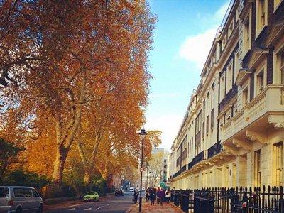 Gordon Square in Autumn