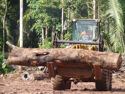 Log on fork lift truck